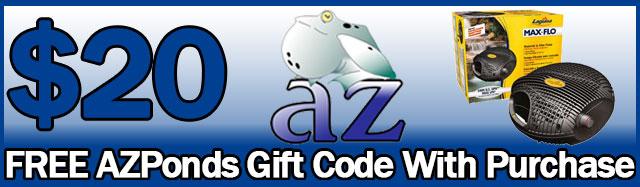 gift certificate banner