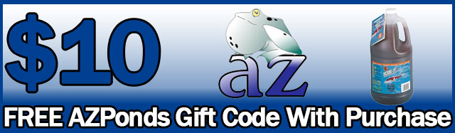 10 gift certificate banner